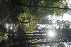 u nature (4)