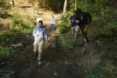 walk (3)