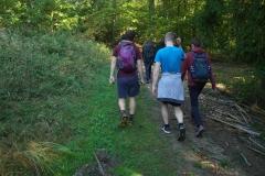 walk (4)