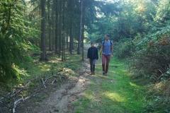 walk (5)