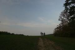 walk (6)
